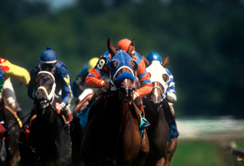The Pluses of Handicapping Contests