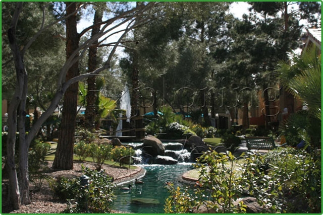 Westgate resort garden wedding chapel review exporing for Garden statues las vegas nv